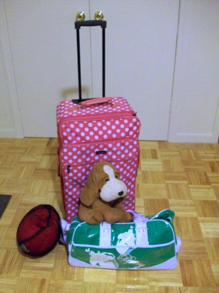 NewYorkSept2008_suitcases.JPG